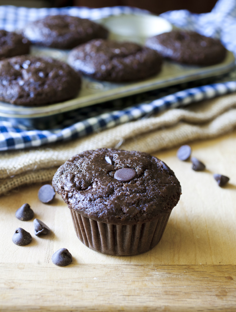 double chocolate chip buttermilk muffins makes about 9 12 muffins